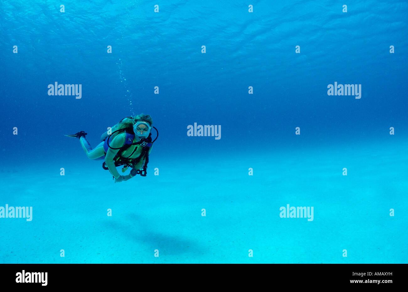 Scuba Diver Antille Olandesi Bonaire Mar dei Caraibi Immagini Stock