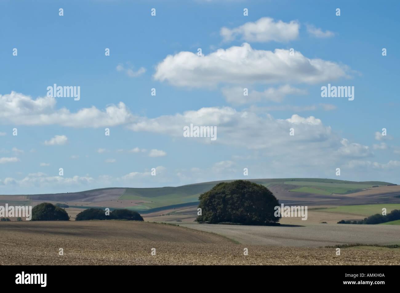 Vista a sud-ovest da Overton Hill su la ridgeway national trail nei pressi di Avebury Foto Stock