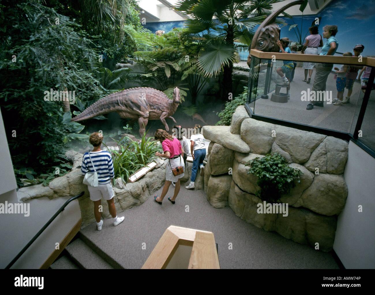 Stati Uniti NEW MEXICO ALBUQUERQUE dinosauri in mostra presso il Museo di Storia Naturale e delle scienze in Albuquerque Foto Stock