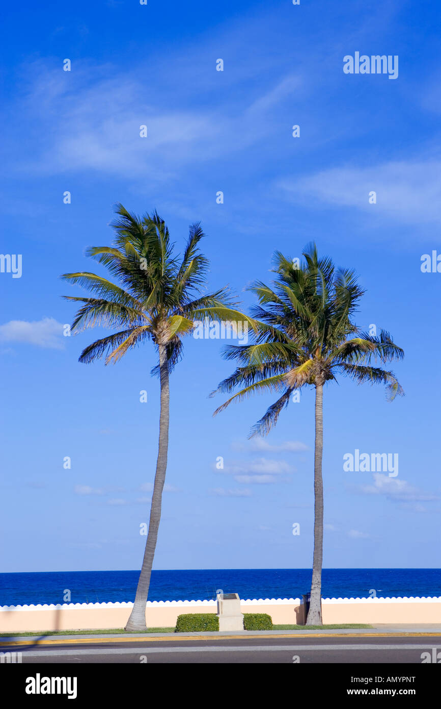 Passeggiata lungo la spiaggia di Palm Beach, Florida, Stati Uniti d'America Immagini Stock