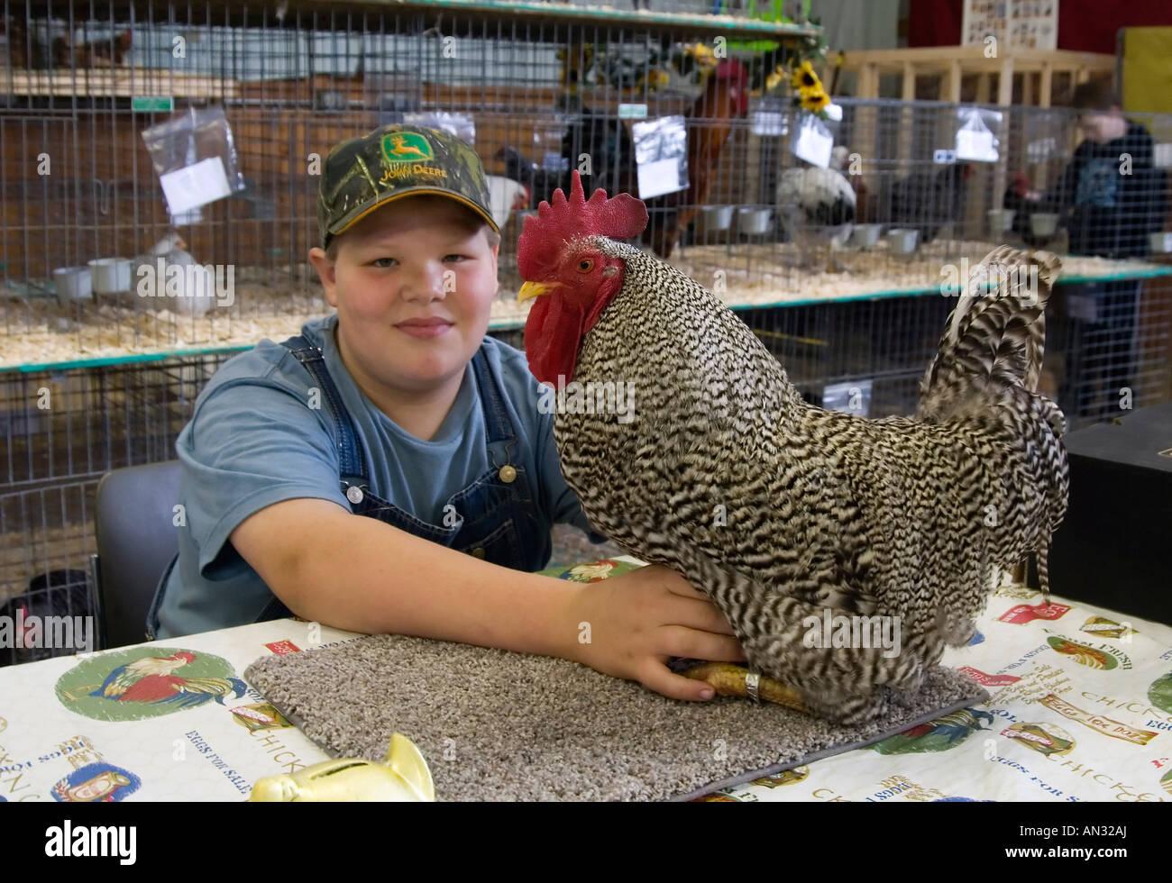 4H mostrano presso il Dutchess County Fair di Rhinebeck NY Immagini Stock
