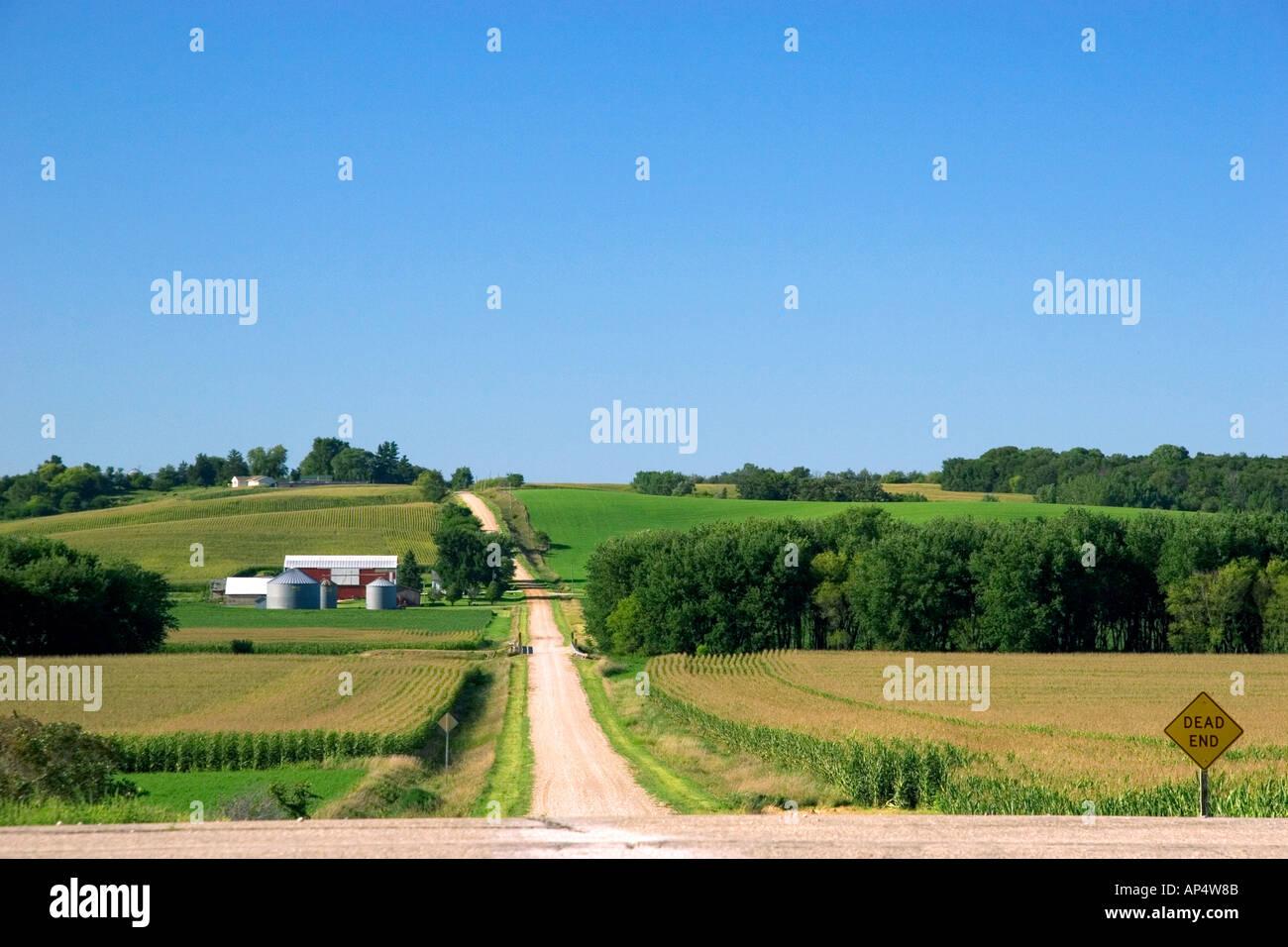 Strada di campagna con la fattoria e campi di mais a sud-ovest di Traer Iowa Immagini Stock