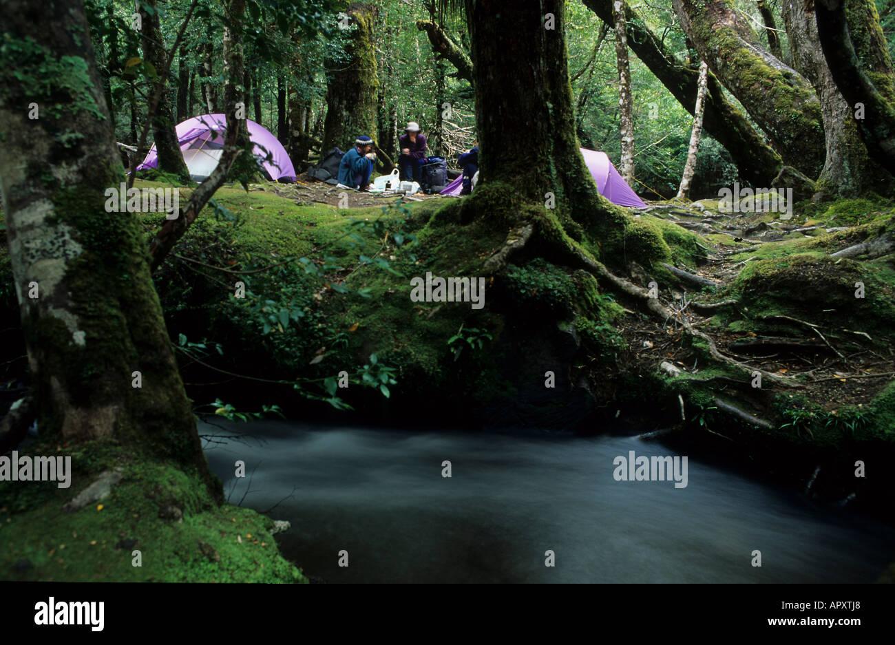 Tende, valle del pino, Cradle Mountain Nat Park, Australia Tasmania, camping dal fiume Narciso su Overland Track in culla Mounta Immagini Stock