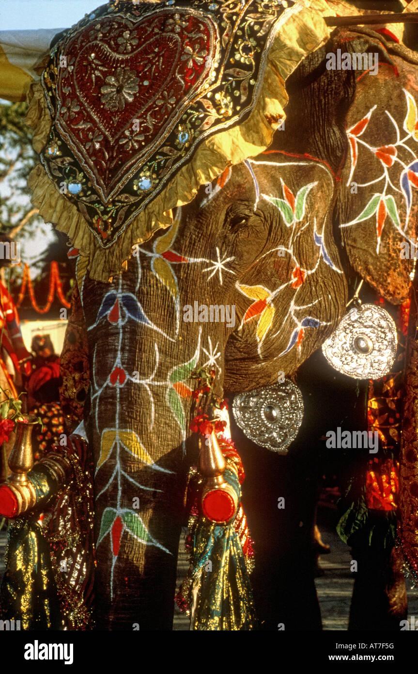 Un riccamente decorate elefante indiano adornata con jeweled panno e bracciali in argento a una celebrazione India Foto Stock