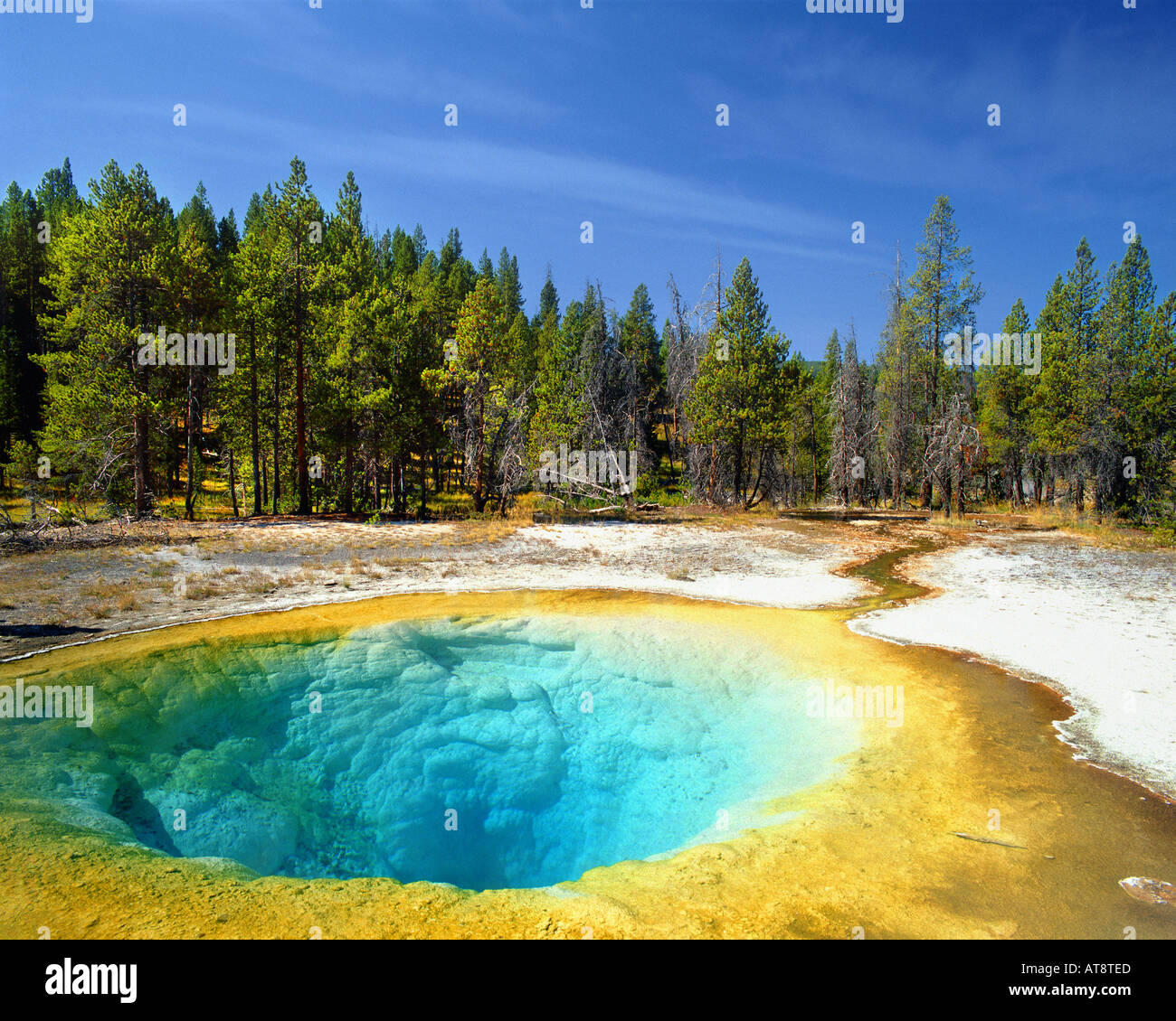 Stati Uniti - Wyoming: gloria di mattina in piscina a Yellowstone Nat. Park Immagini Stock