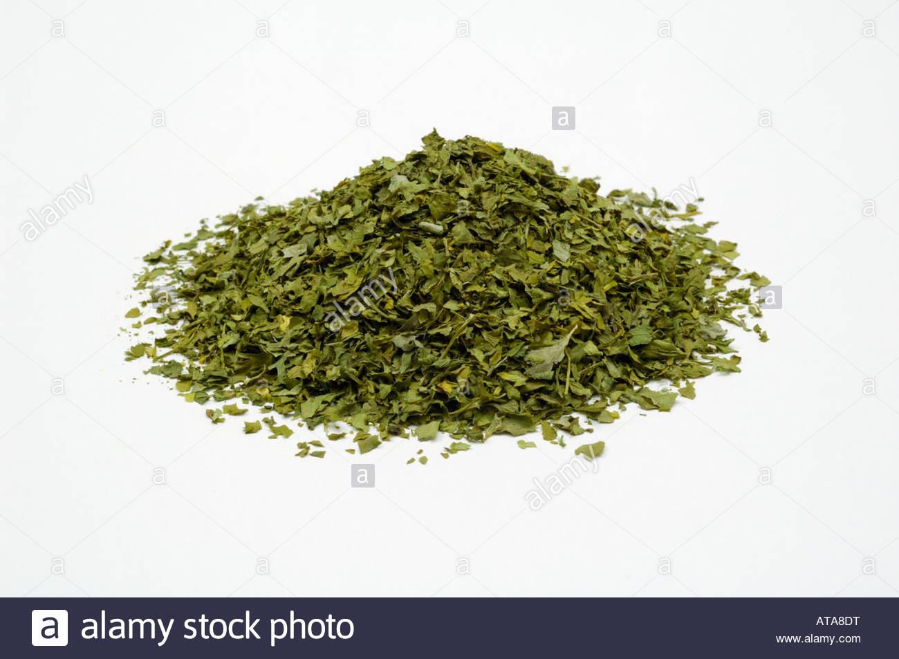 Cumulo di tritata di prezzemolo essiccato (Petroselinum crispum) su sfondo bianco Immagini Stock