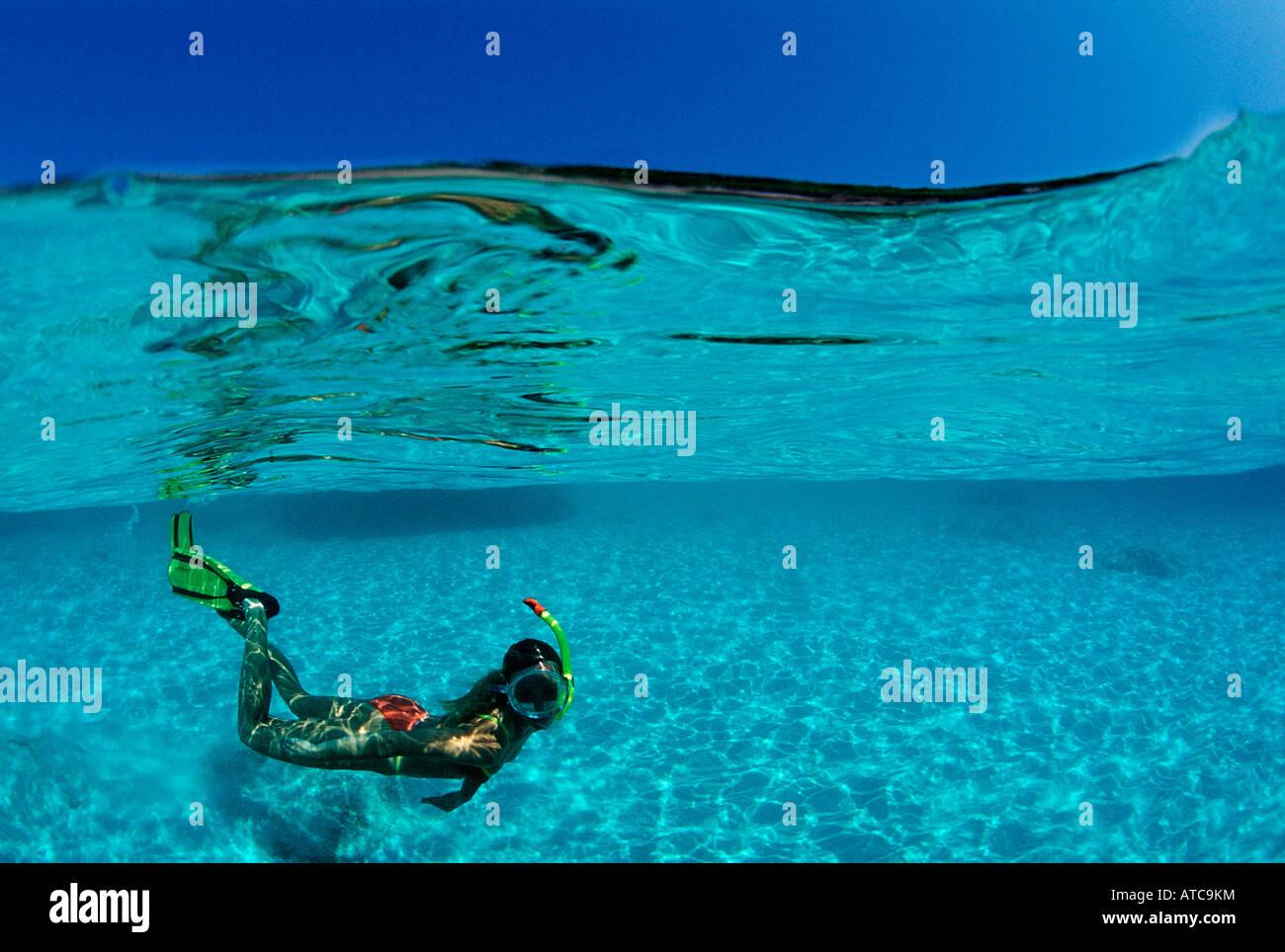 Lo snorkeling a Laguna Mar dei Caraibi Bahamas Immagini Stock