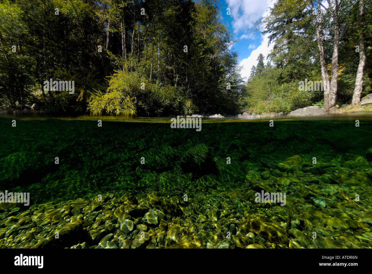 Patrick Creek California Foto Stock