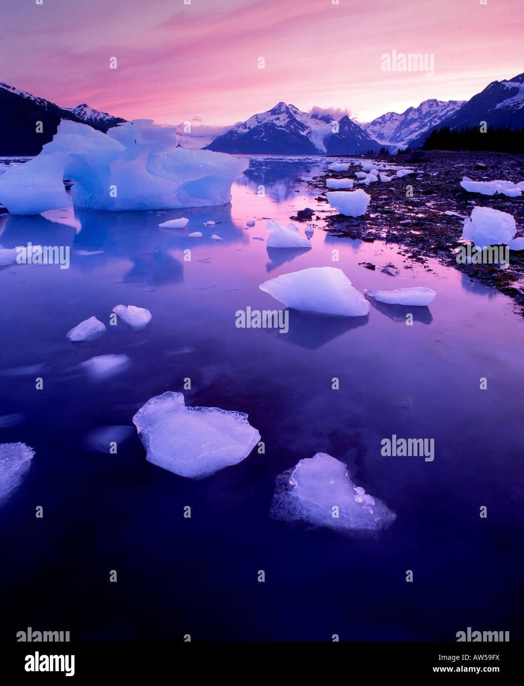 Iceberg da tidewater ghiacciai, Harriman fiordo Alaska Stati Uniti d'America Foto Stock