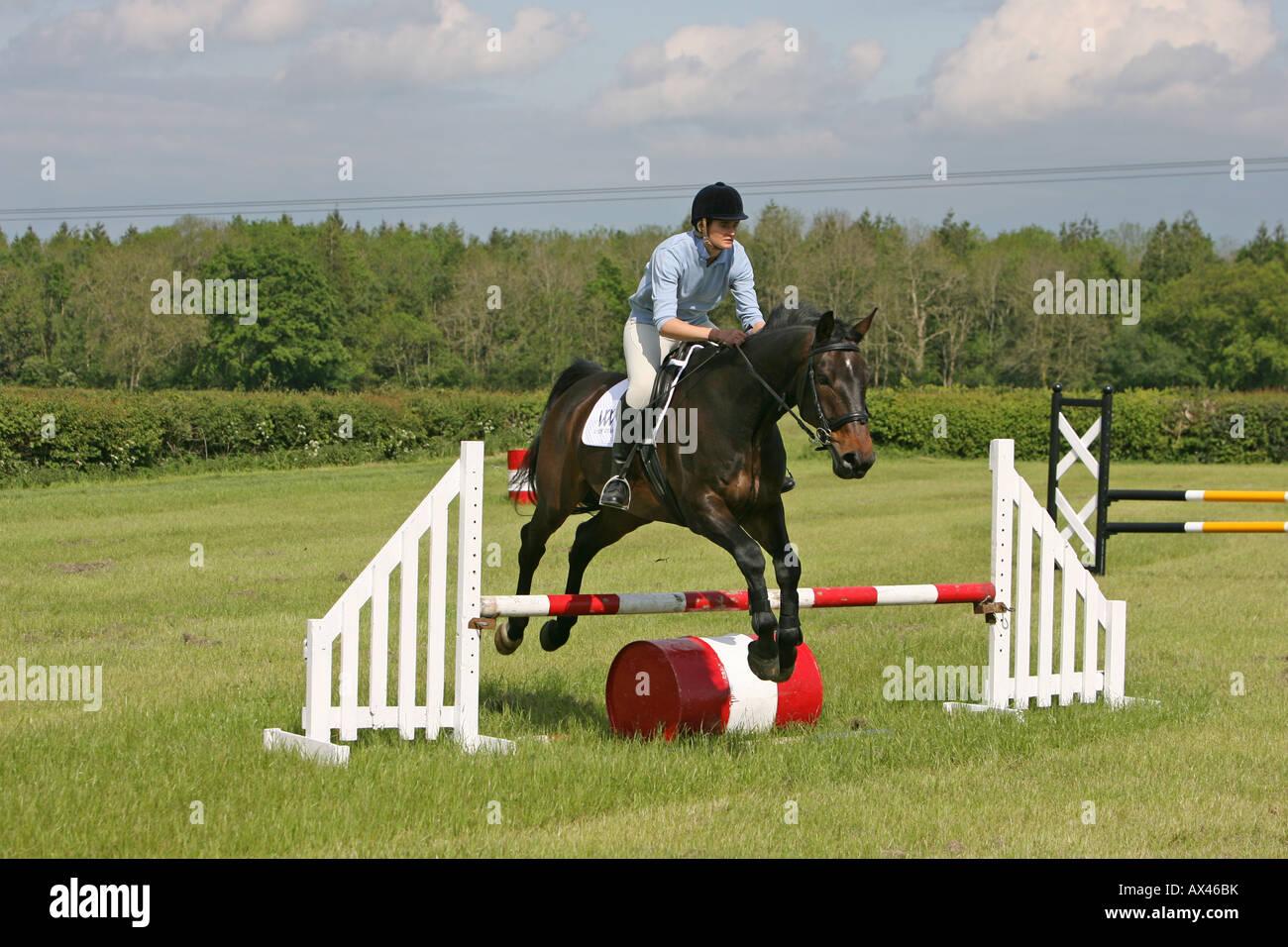 Una donna che si tuffa il suo cavallo all'aperto, in una scuola di equitazione. Immagini Stock