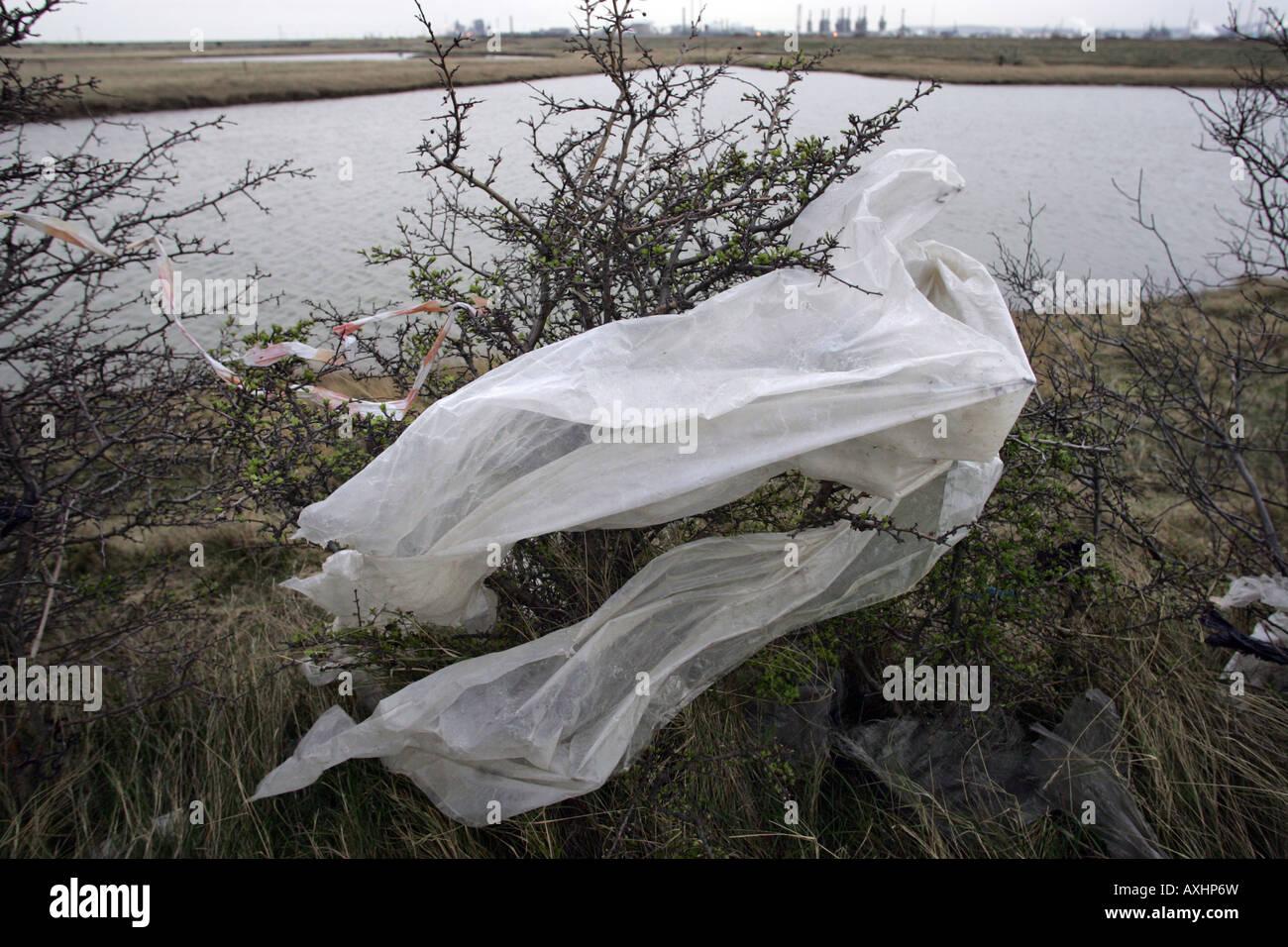 Plastica soffiata da un terreno sito di riempimento nella guarnizione Sands vicino a Middlesbrough Cleveland, Regno Immagini Stock