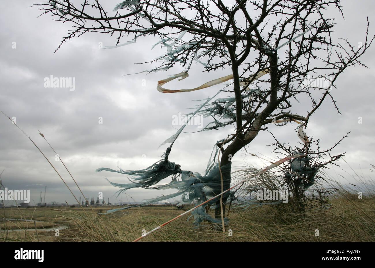 Plastica soffiata da un terreno sito di riempimento nella guarnizione Sands vicino a Middlesbrough Immagini Stock