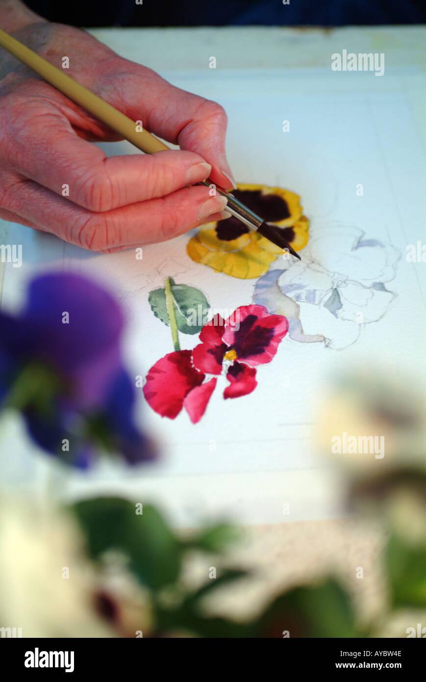 Fiori ad acquerello Immagini Stock