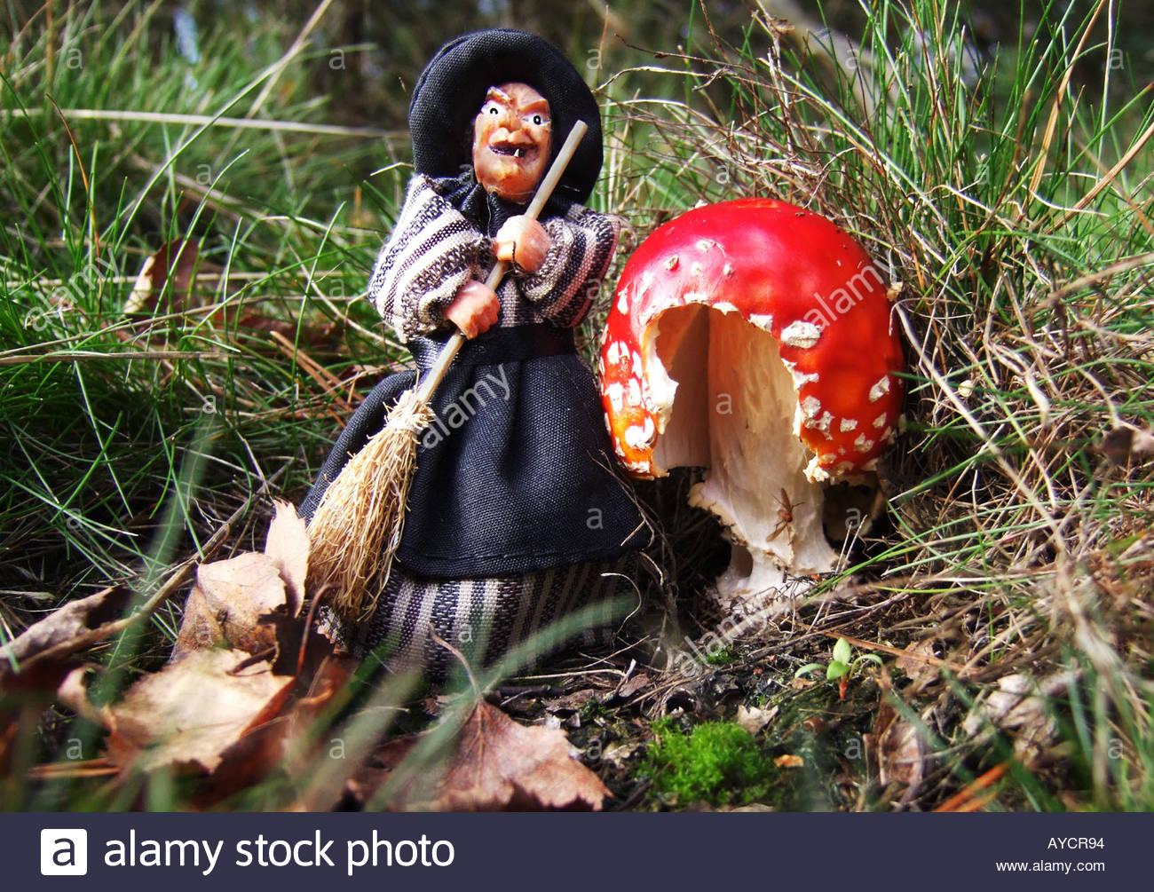Una strega vestita di nero sorge accanto a un fly agaric toadstool in una giornata autunnale nella Foresta di Sherwood, Inghilterra Immagini Stock