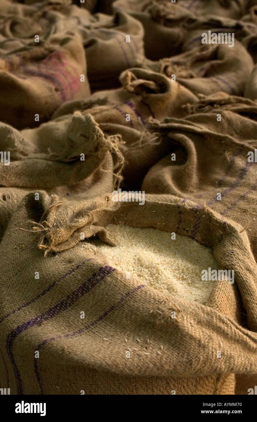 Sacchi di riso in attesa di esportazione da India in Europa Immagini Stock