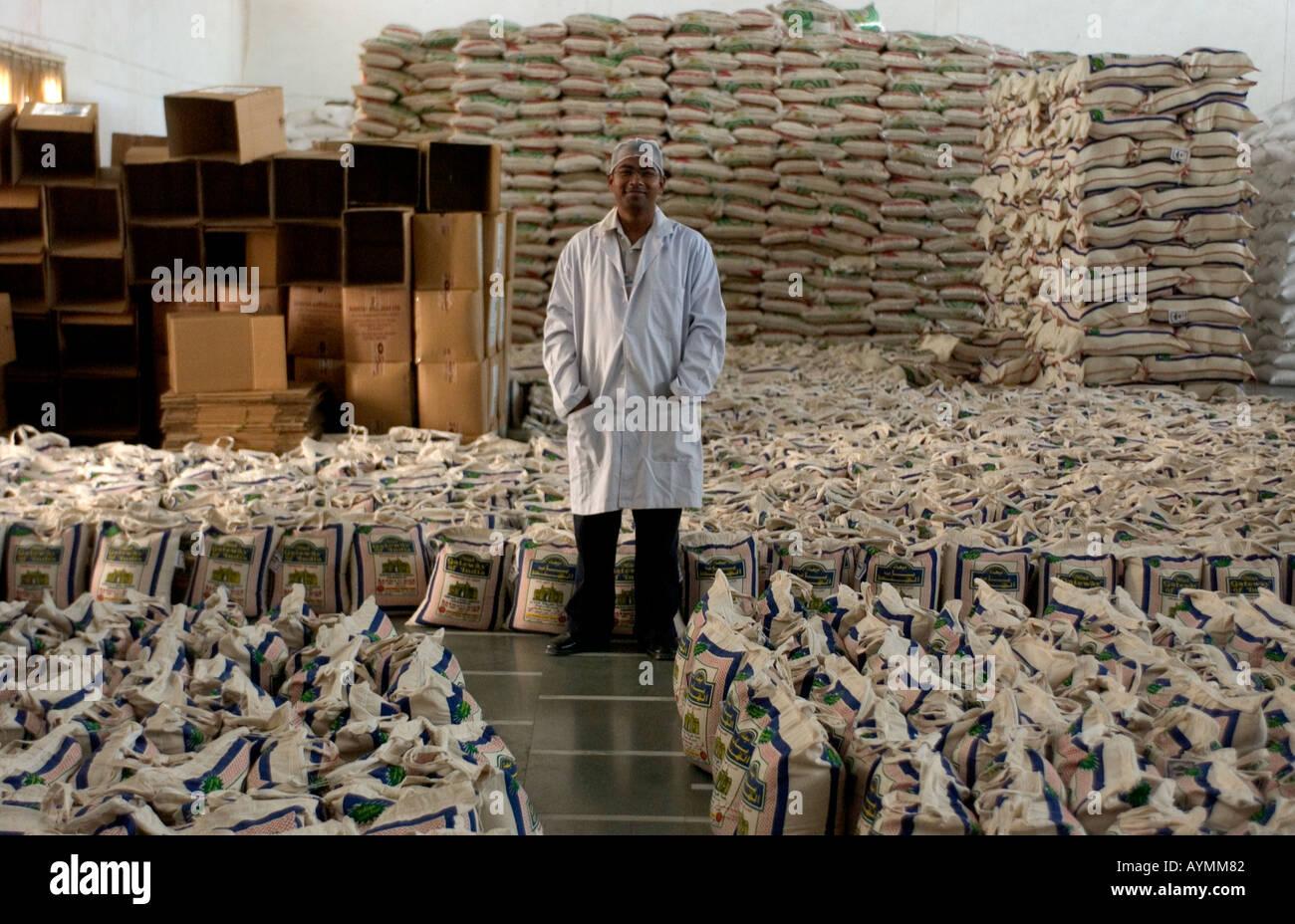 Lavoratore di riso Riso in impianti di trasformazione, India del nord. Qui di riso viene esportata in Europa sotto il Fairtrade deal Immagini Stock