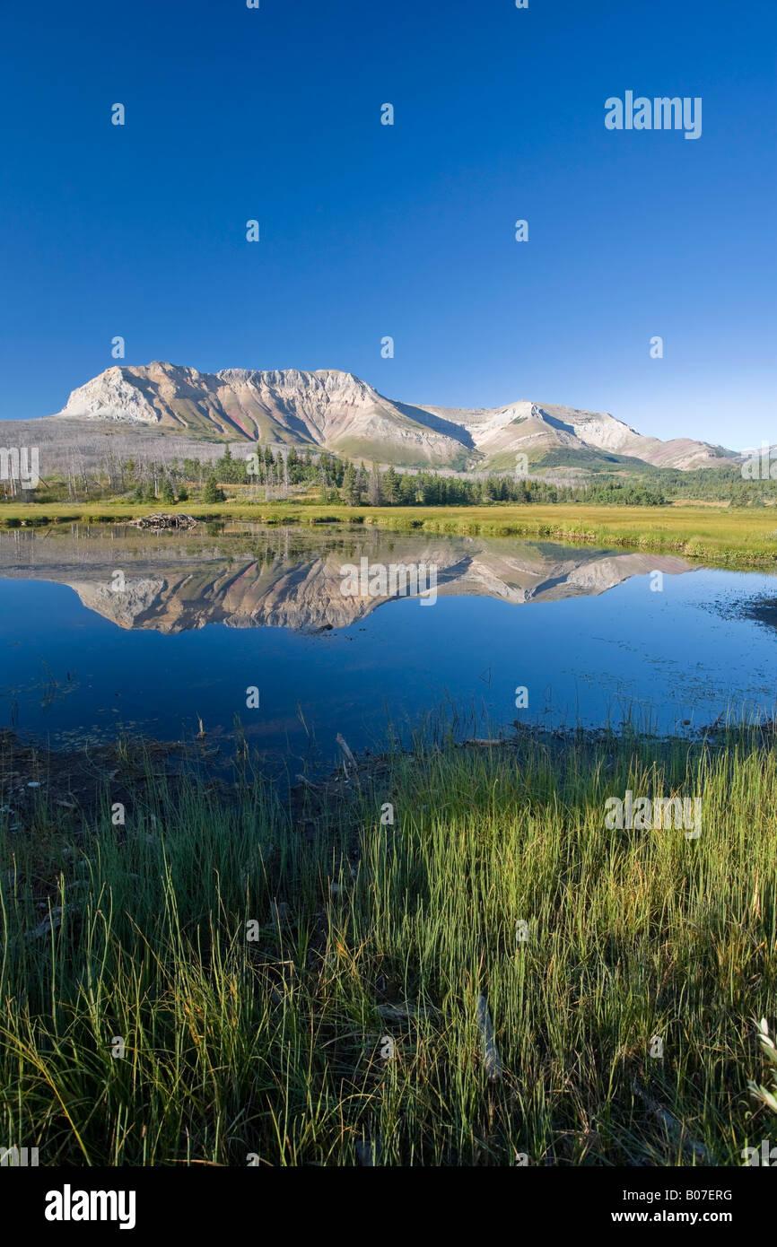Divano montagna, Parco Nazionale dei laghi di Waterton, Alberta, Canada Foto Stock