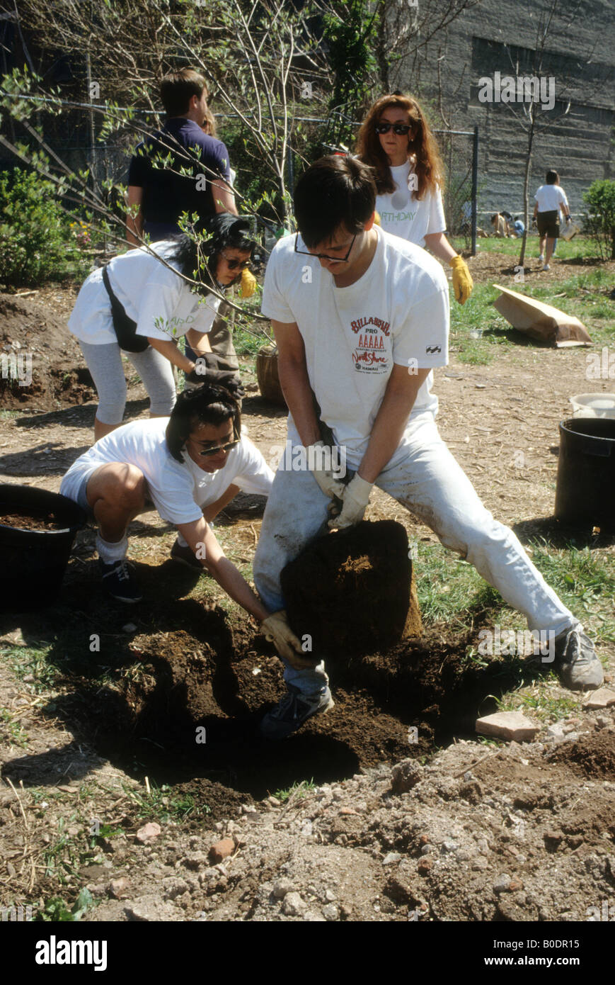 Volontari piantare alberi sul giorno di terra in un futuro orto comunitario a New York Immagini Stock