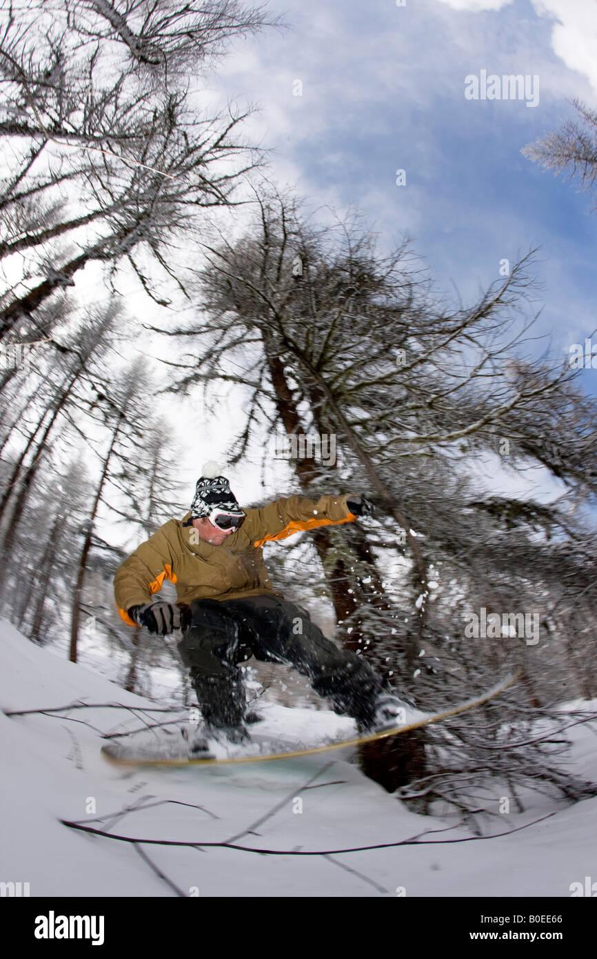 Snowboarder cavalcare attraverso gli alberi fuori pista. Immagini Stock
