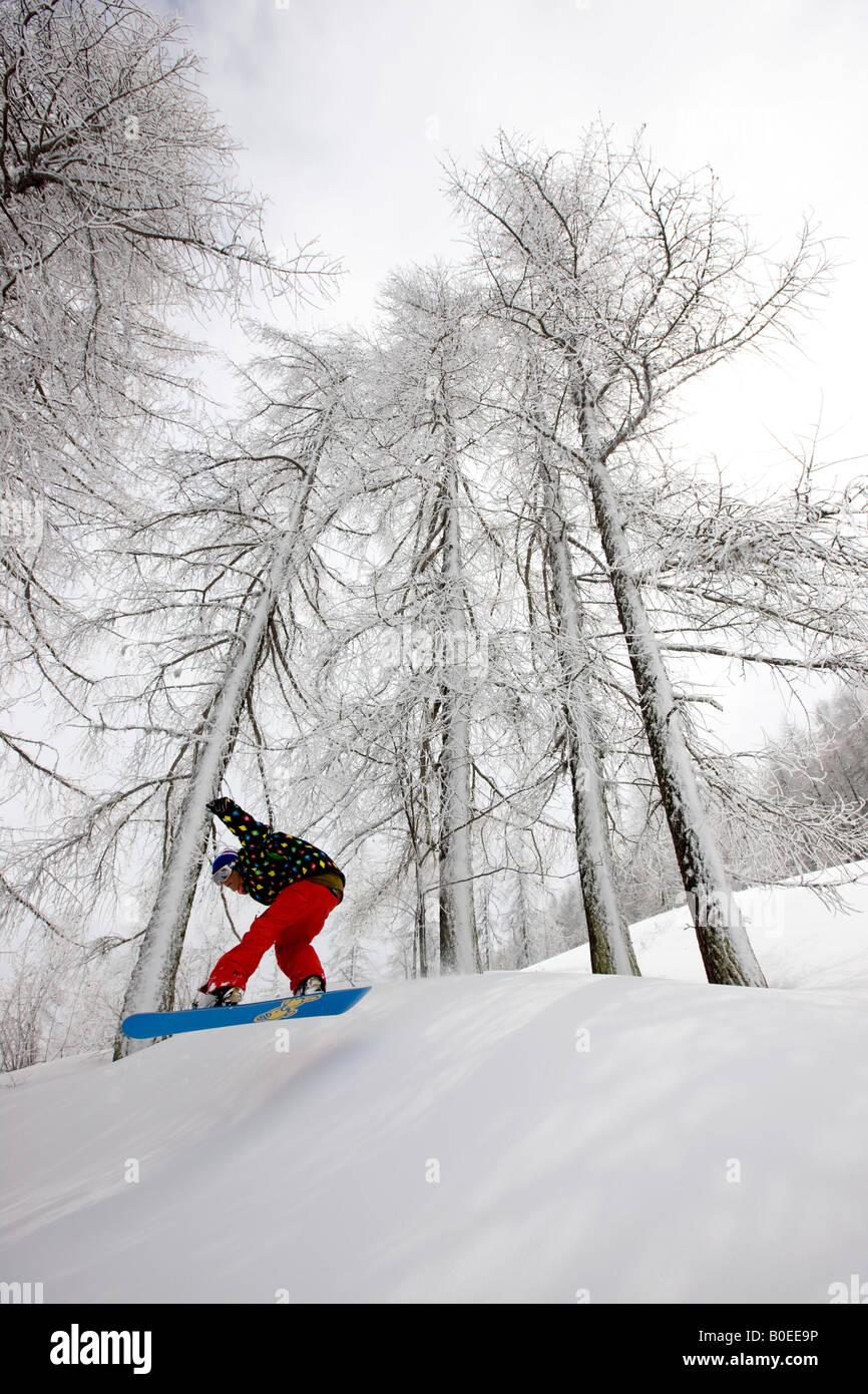 Snowboarder fuori pista a cavallo attraverso gli alberi. Immagini Stock