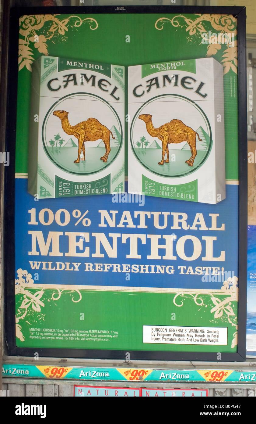 Camel Carbon datazione