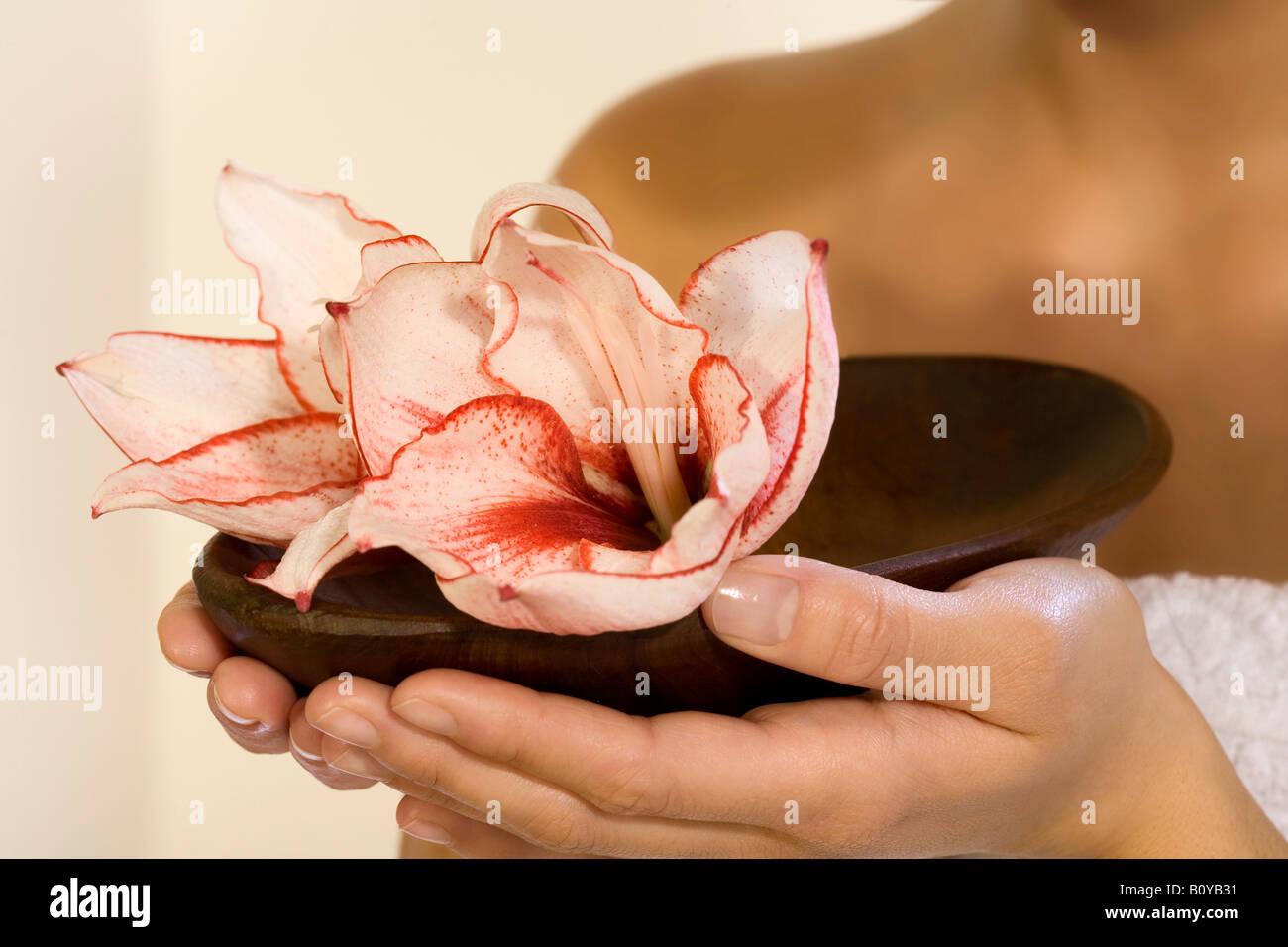 Donna che mantiene un vaso con fiori di orchidea Immagini Stock