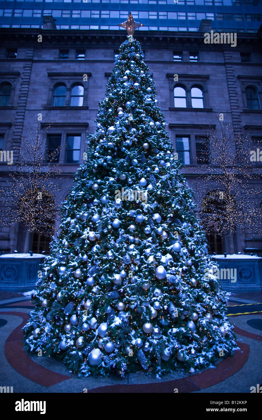 Albero Di Natale New York.Snowy Albero Di Natale New York City Palace Hotel Madison Avenue