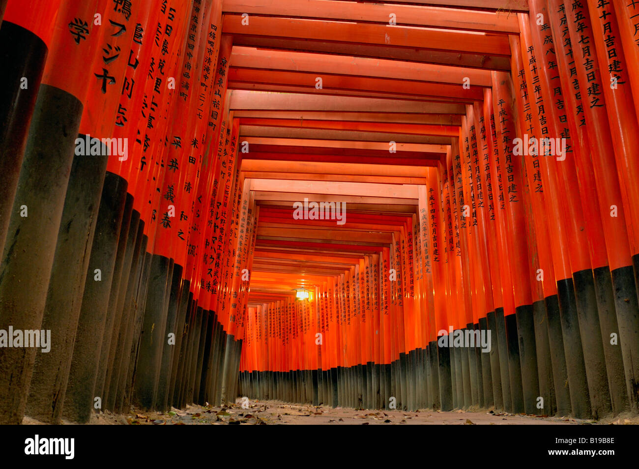 Torii gates Fushimi Inari Taisha Honshu Kyoto in Giappone Foto Stock