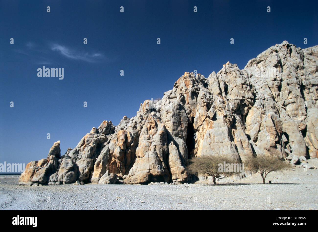 Paesaggio bizzarro con montagne rocciose e alberi di acacia, Oman, Arabia, Penisola Arabica, Asia Centrale, Asia Immagini Stock