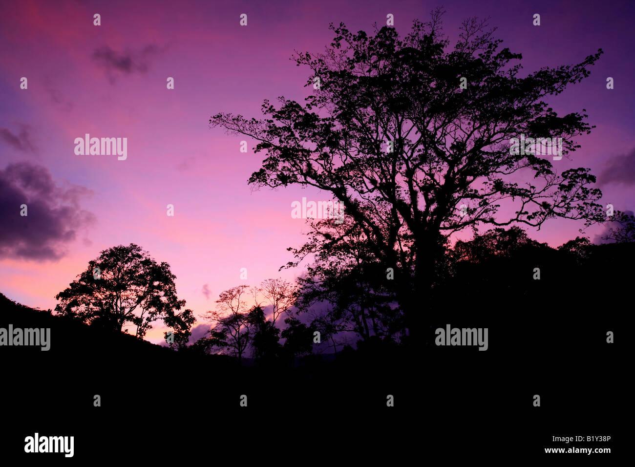 Serata di rosso le nuvole nel campo di Cana stazione nel Parco Nazionale del Darién, Repubblica di Panama. Immagini Stock