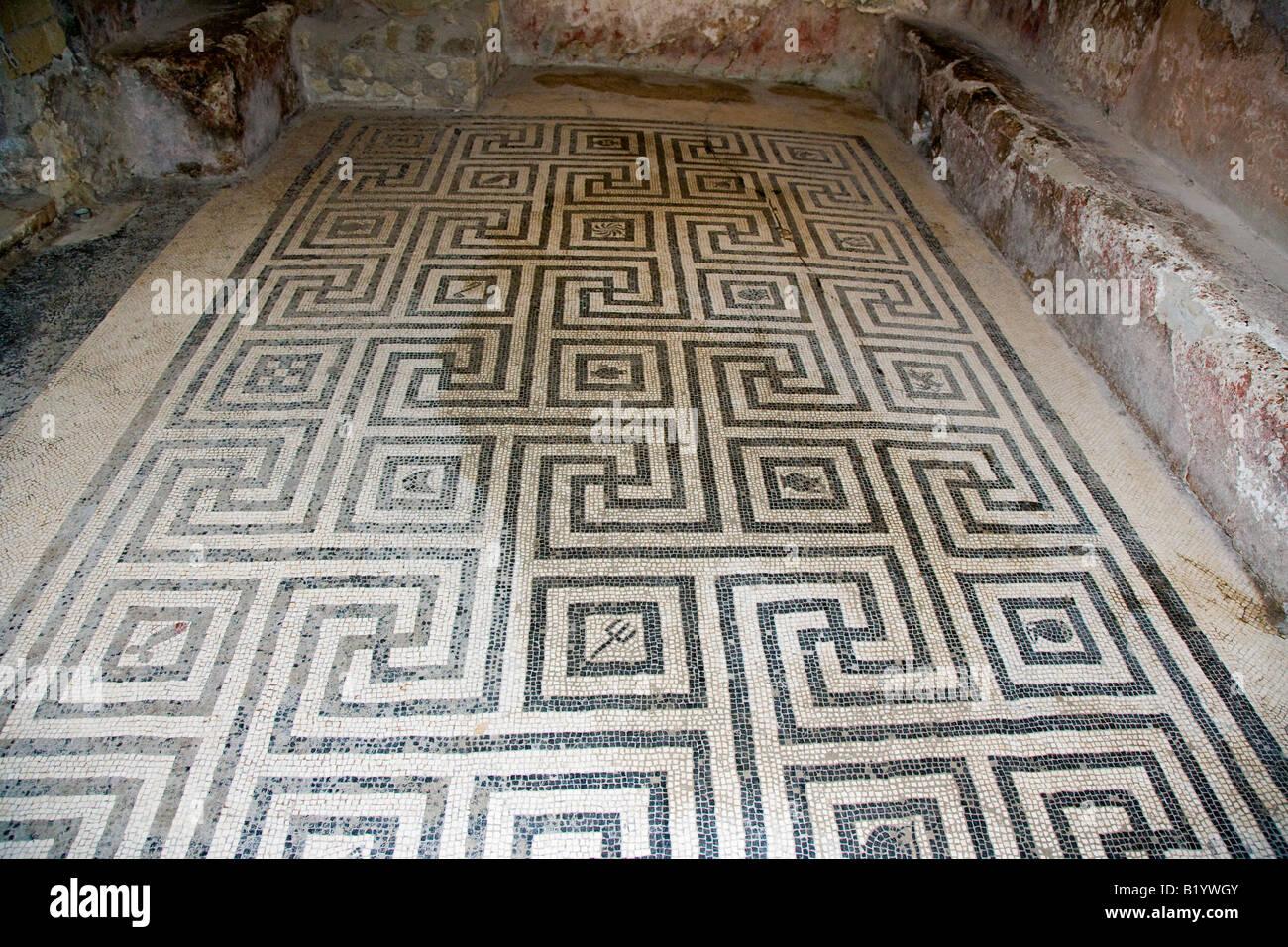 Progetta in mosaico sul pavimento del complesso di bagni di