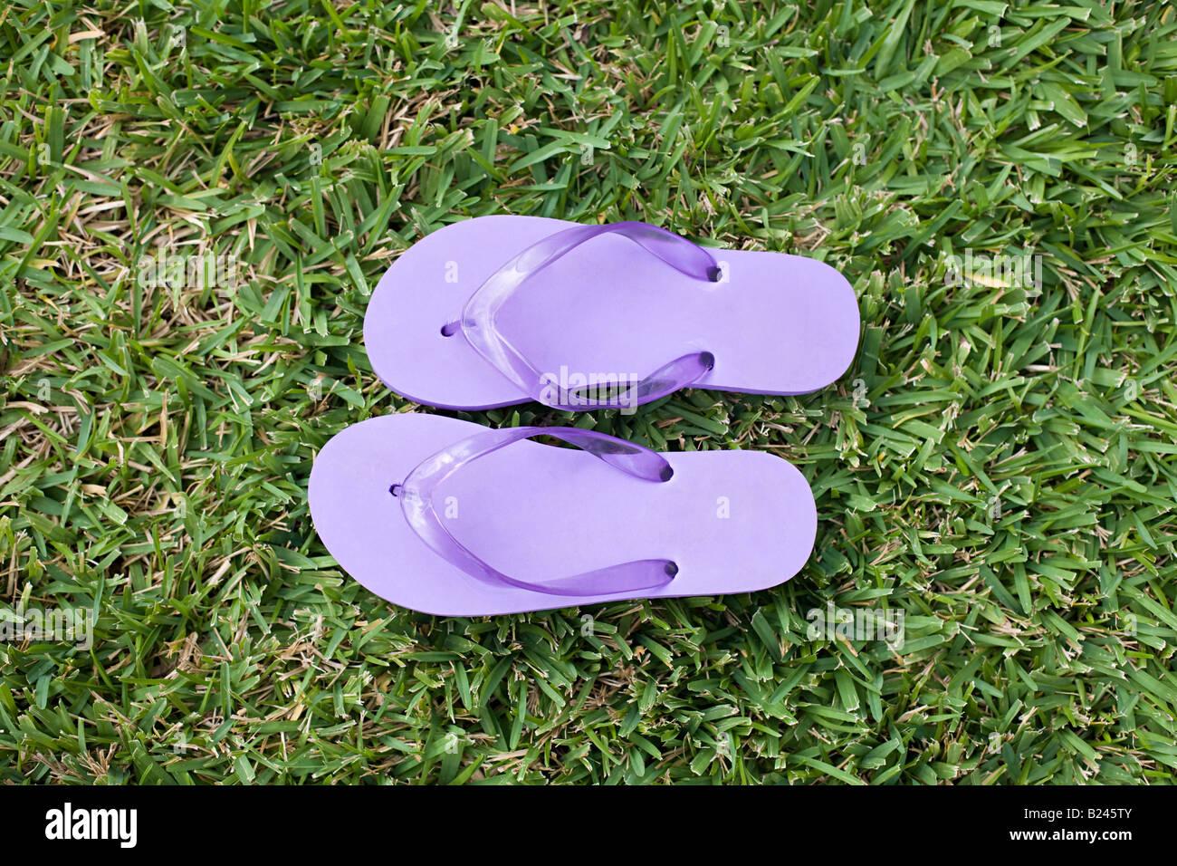 Viola flip flop Immagini Stock