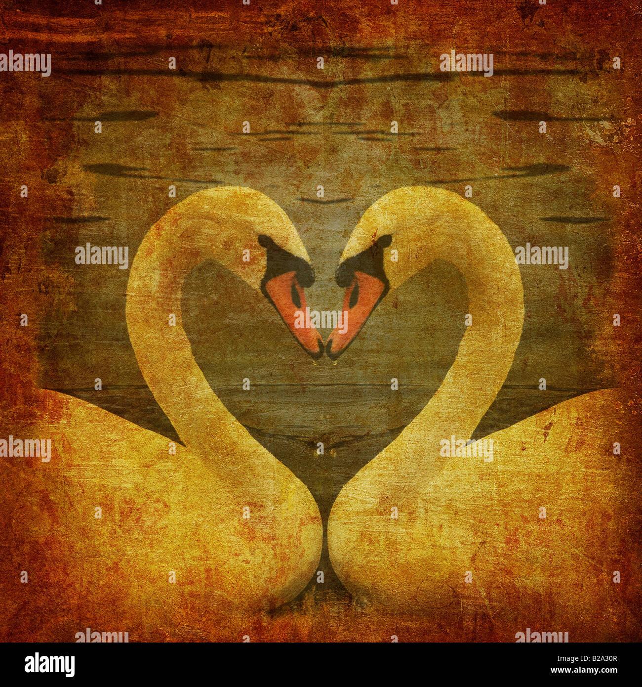 Grunge cartolina con due cigni in amore Immagini Stock