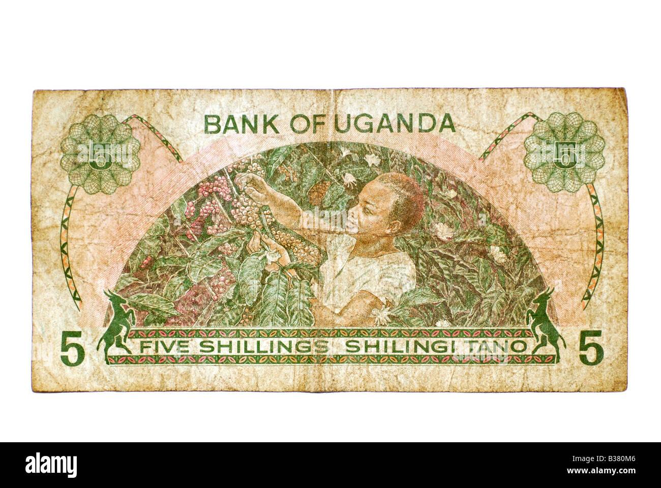 Utilizzate la Nota Banca, Uganda 5 scellini, East Africa valuta dal 1982 Immagini Stock