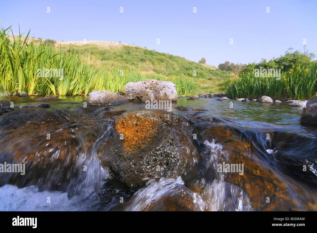 """Israele. Ein-Tinah (""""fig la molla') in Galilea, vicino le alture del Golan. Immagini Stock"""