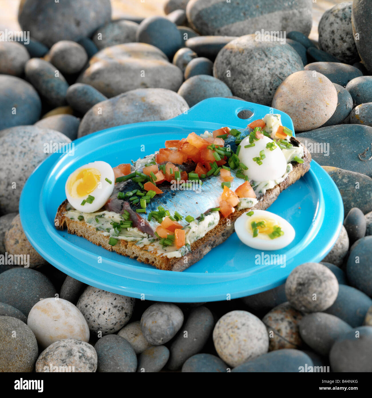 Sardine e pomodoro bruschetta bretone Immagini Stock