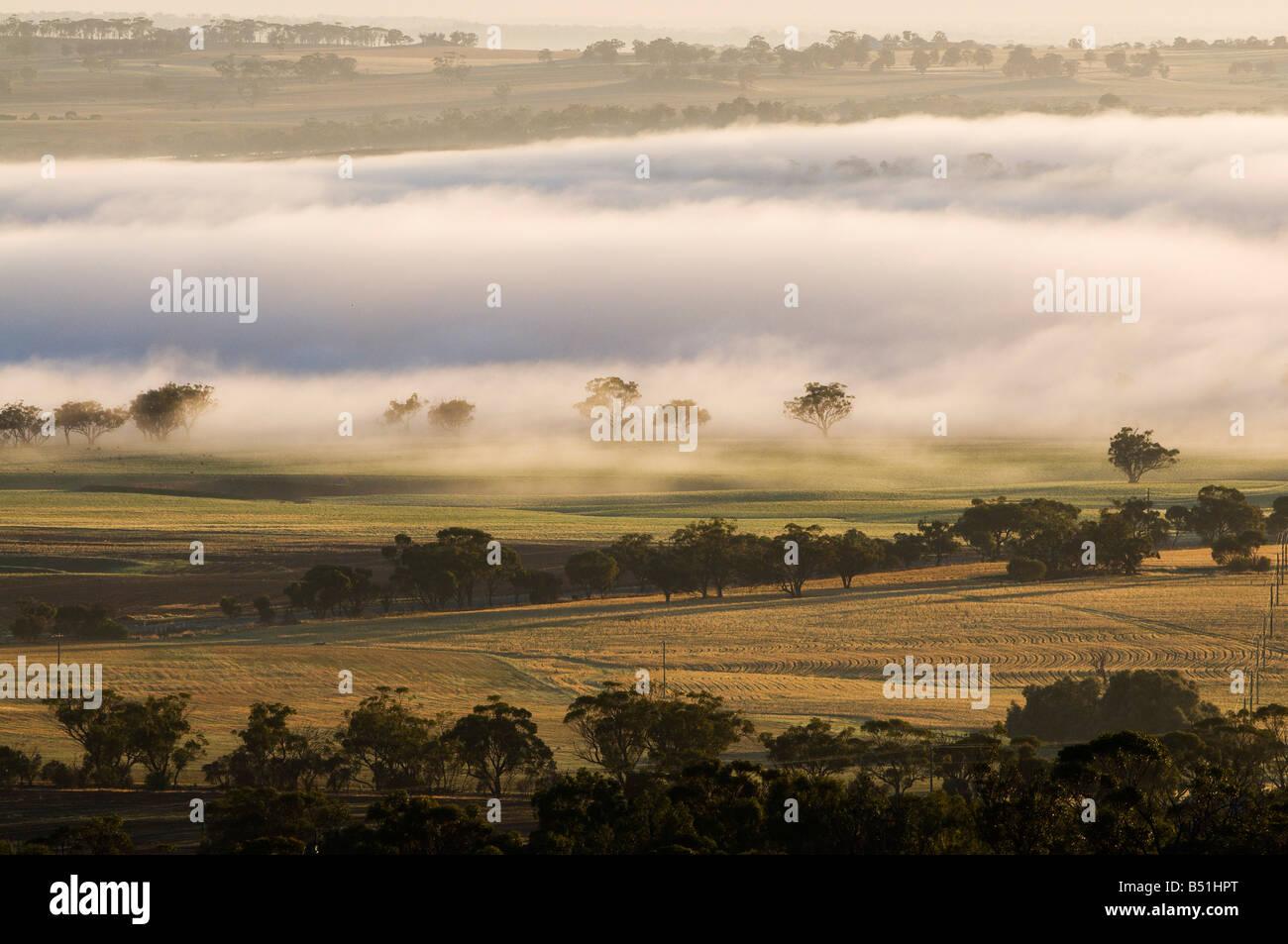 Valle di Avon, York, Australia occidentale, Australia Foto Stock