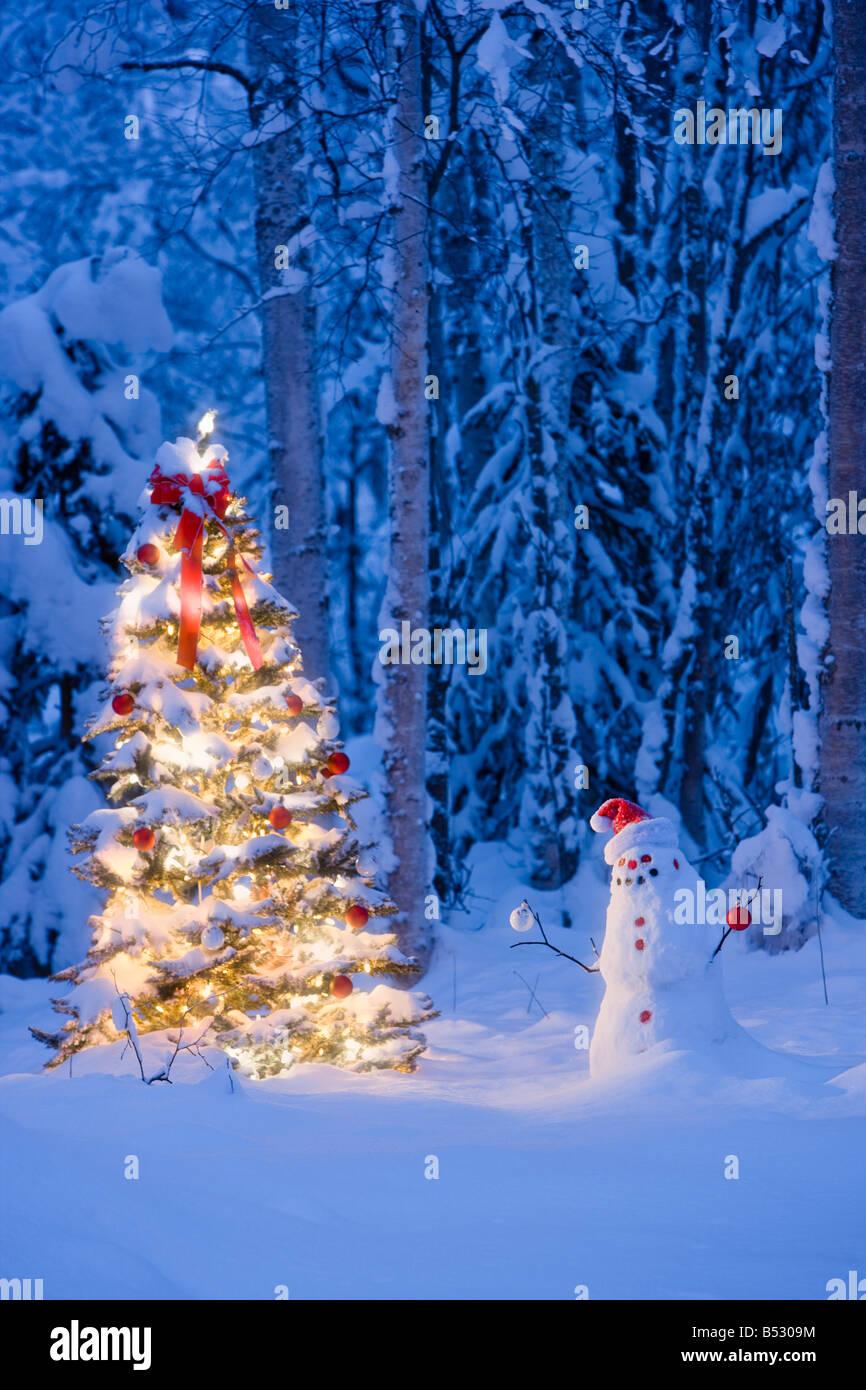 Immagini Di Natale Con La Neve.Pupazzo Di Neve Con Cappello Da Babbo Natale Decorazioni Su