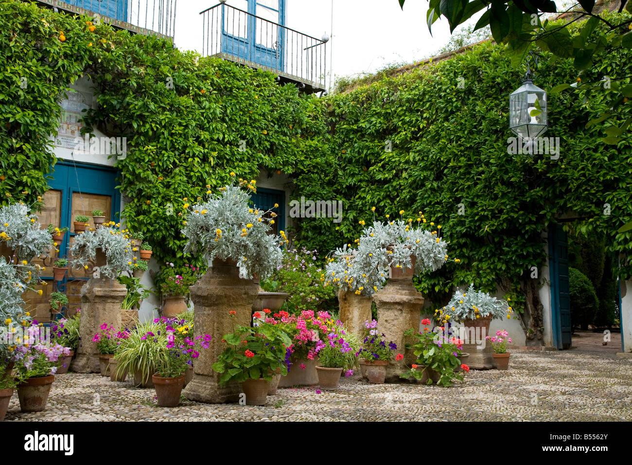 Vasi per piante in un giardino mediterraneo giardino parte for Giardino mediterraneo