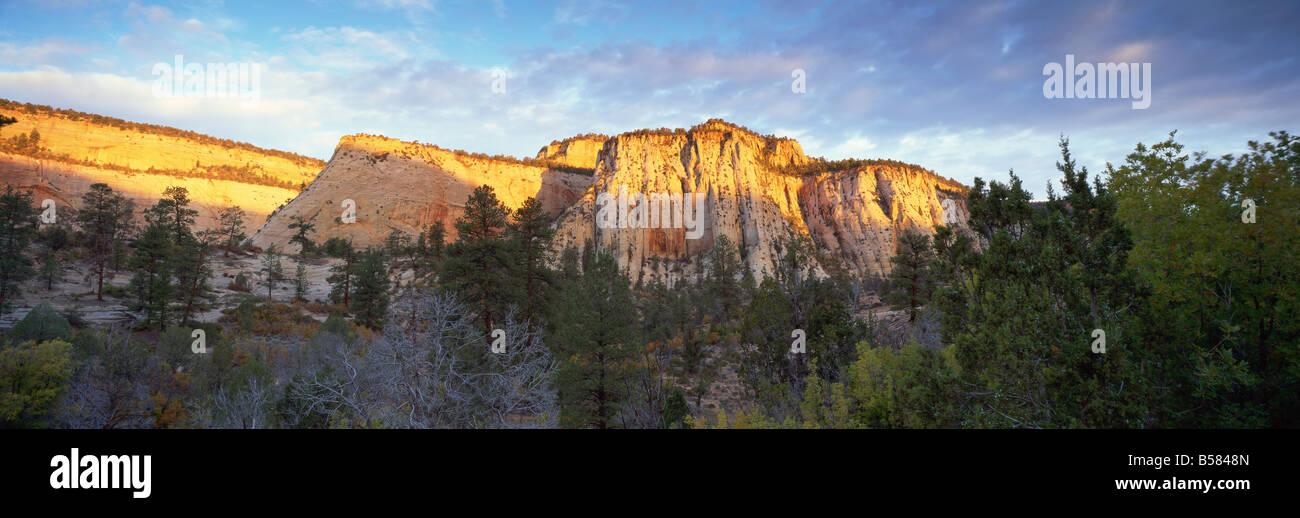 La prima luce sulle colline, Parco Nazionale Zion, Utah, Stati Uniti d'America, America del Nord Foto Stock