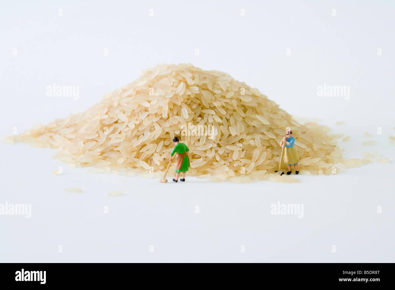 Donne in miniatura spazzando gran mucchio di riso Immagini Stock