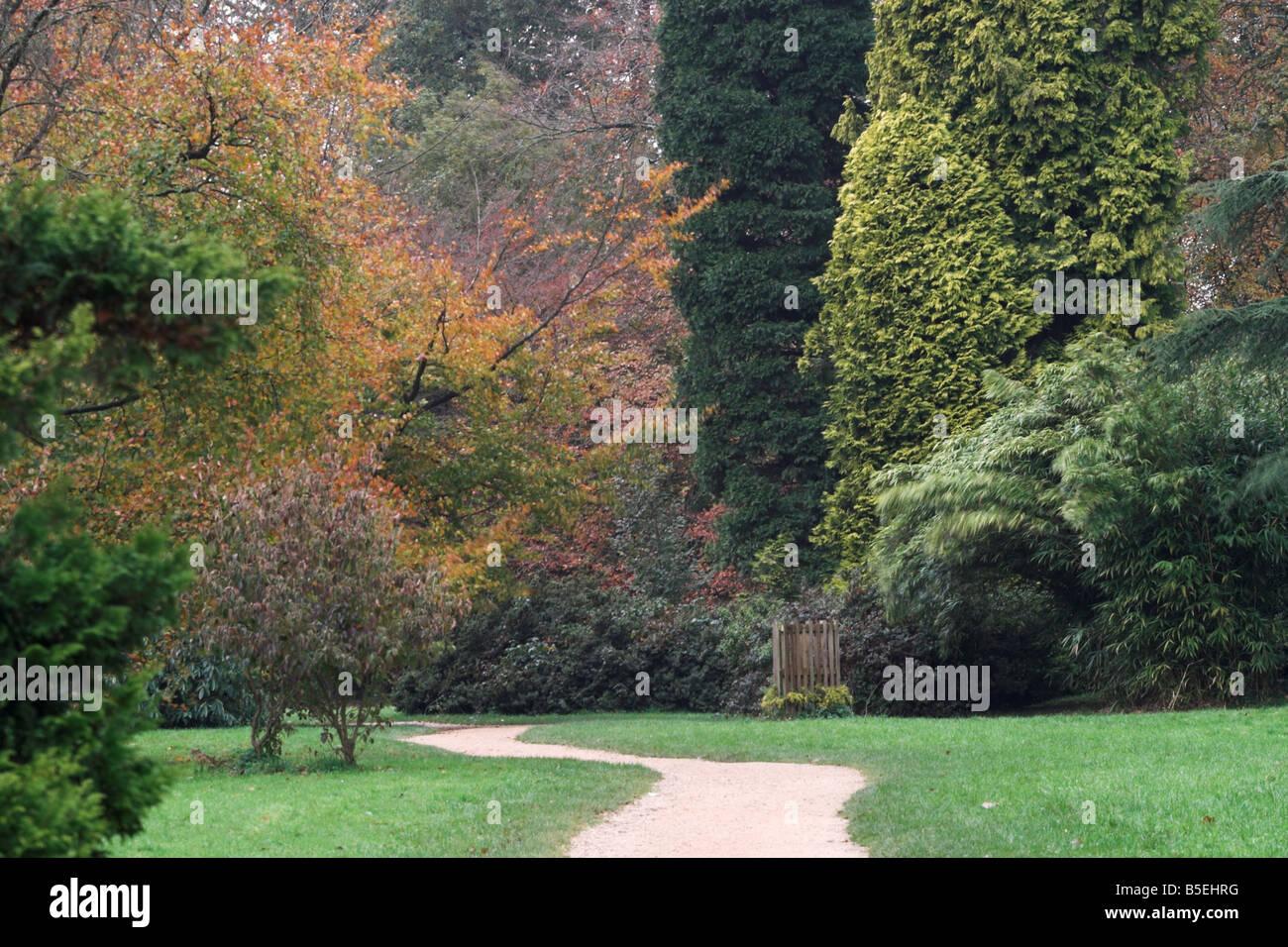 Percorso verso il cielo's Gate, Longleat Estate, Wiltshire Immagini Stock