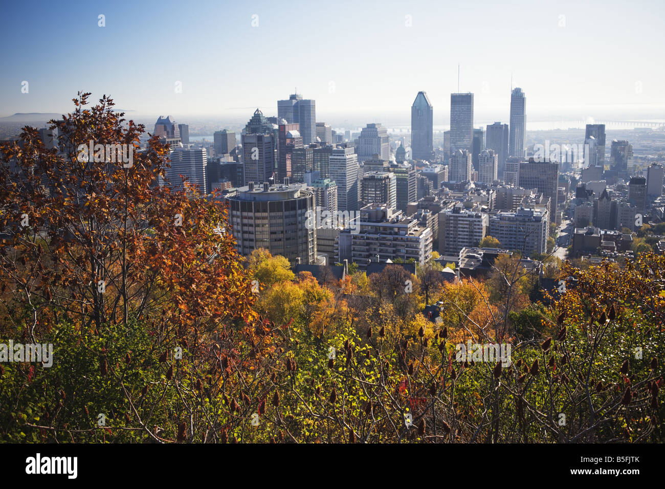 Montreal Downtown dal Mount Royal Immagini Stock