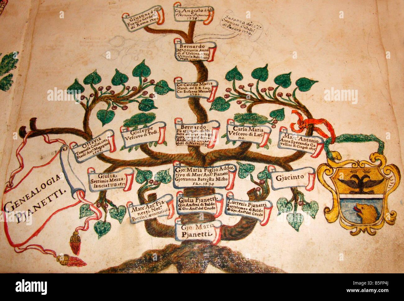 Nella famosa biblioteca storica di Jesi,Le Marche,l'Italia, l'albero genealogico della famiglia Pianetti Immagini Stock