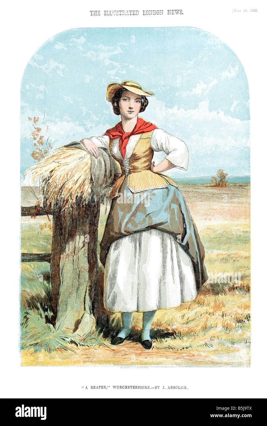 Un reaper Worcestershire 10 maggio 1856 l'Illustrated London News Page Immagini Stock
