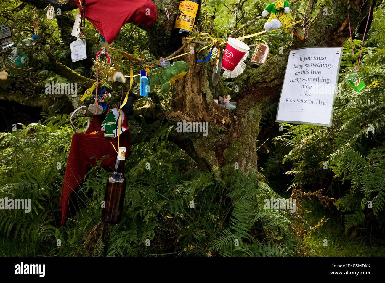 Gli oggetti personali su un albero di fata, successivamente tagliare verso il basso creando sfortuna per il carnefice, Immagini Stock