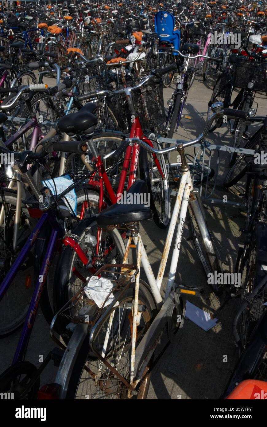 Biciclette Foto Stock
