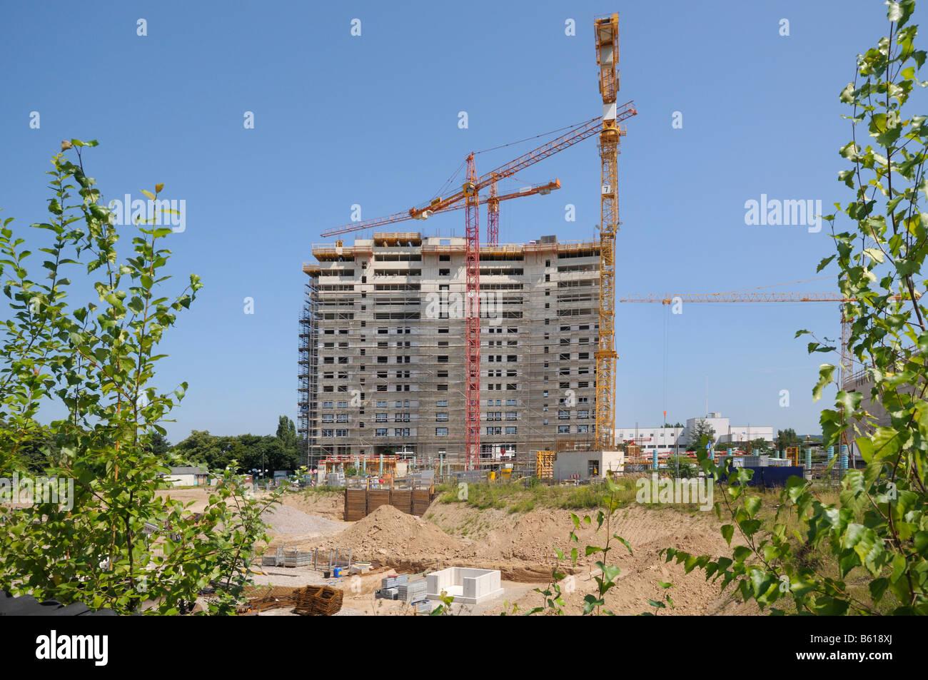 Grandi cantieri edili per UNCC, calcestruzzo guscio del World Conference Centre Bonn con gru per edilizia Immagini Stock