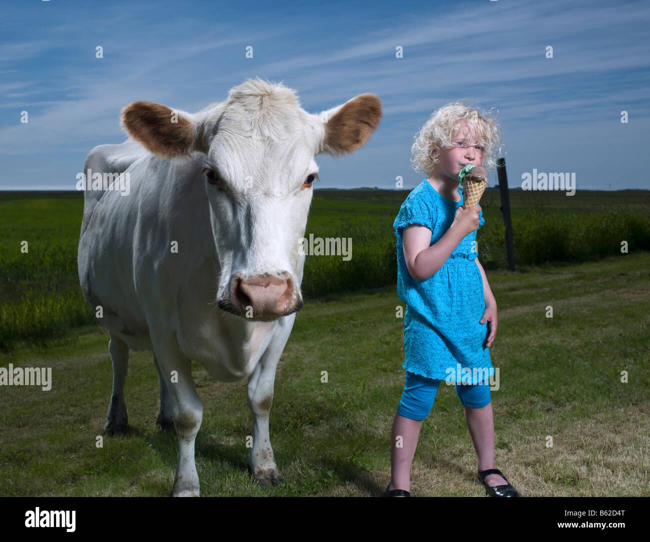 Ragazza giovane di mangiare un cono gelato con il bianco delle vacche da latte, Islanda Orientale Immagini Stock