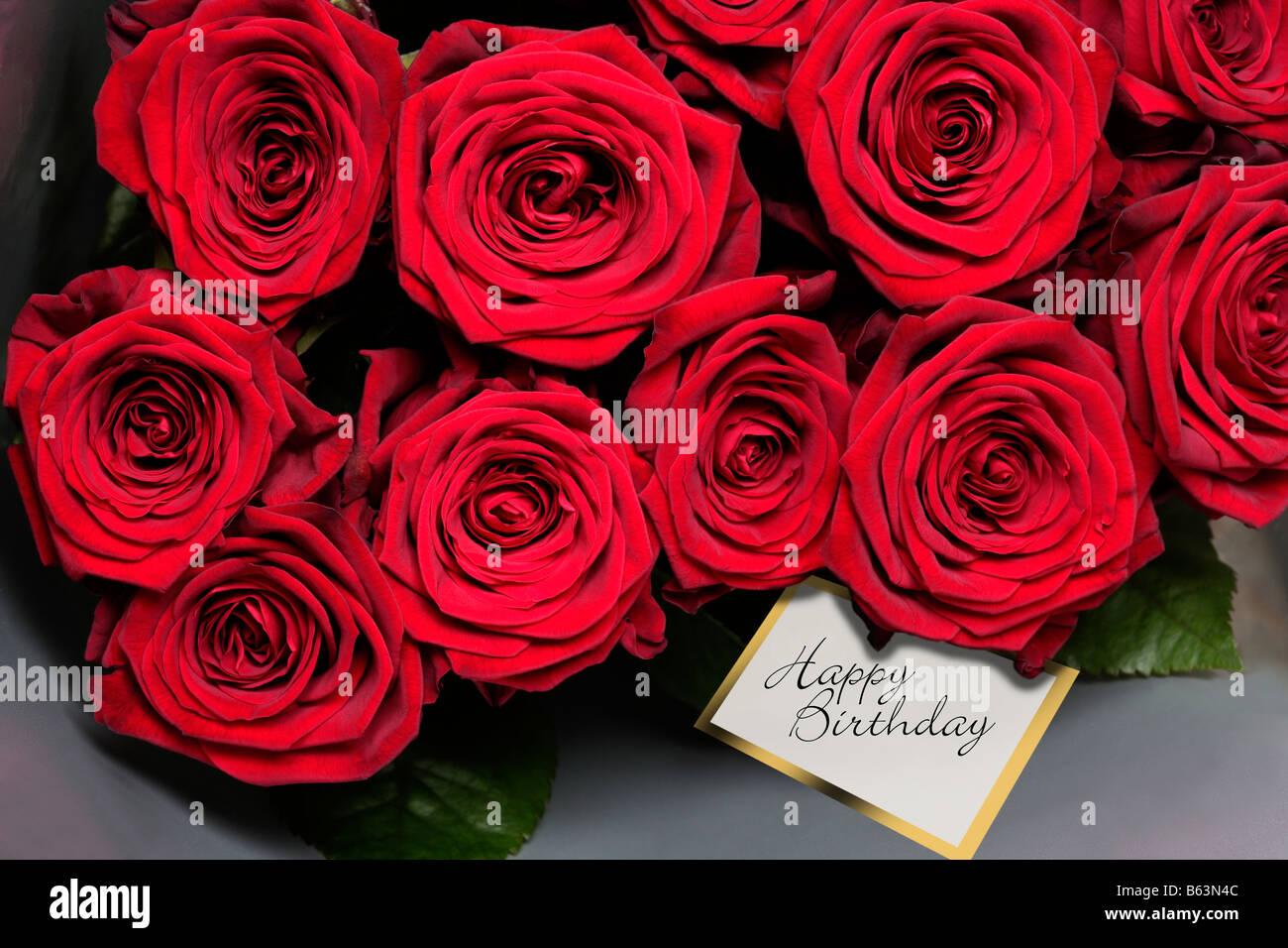 Rose Rosse Con Buon Compleanno Tag Regalo Foto Immagine Stock